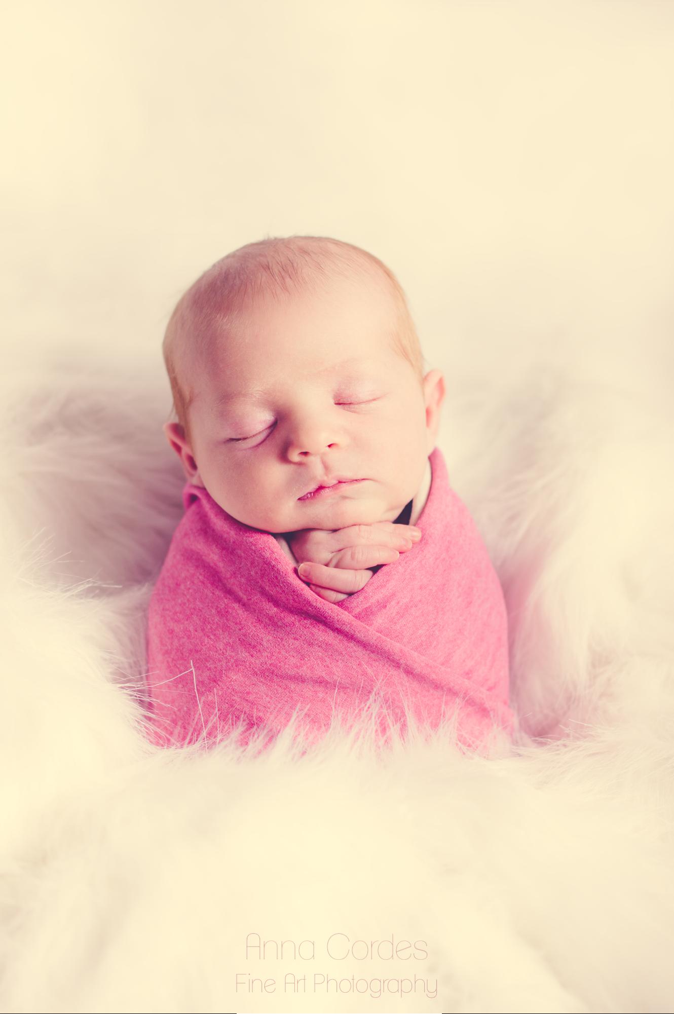 Newborn Baby Neugeborenenfoto Foto Shooting Fotoshooting Newbornshooting Newbornfoto Babyshooting Babyfoto Wien Niederösterreich